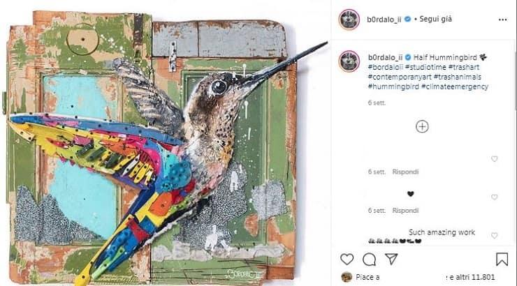 colibrì Bardolo II