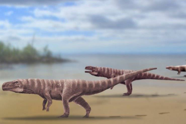 Coccodrilli bipedi