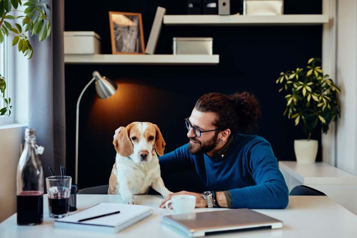 Il padrone e il cane in ufficio (Foto Adobestock)