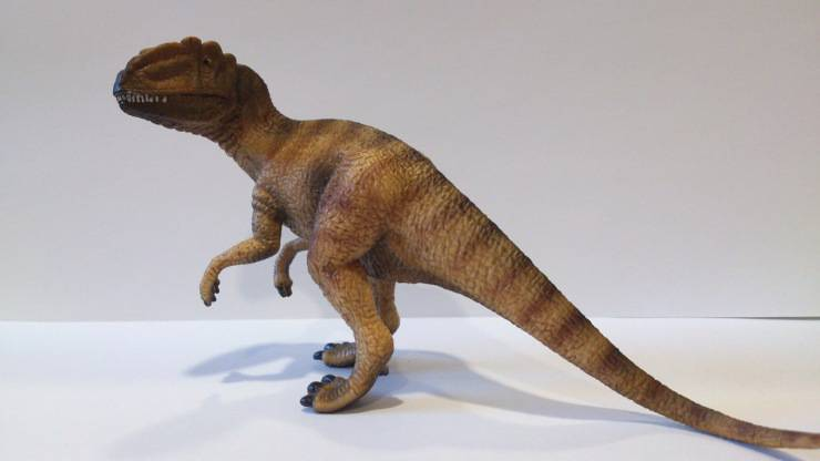 Dinosauri cannibali Allosauro