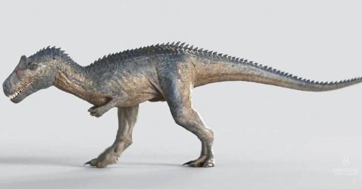 Dinosauri cannibali: il temibile Allosauro