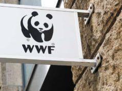 WWF e la Sostenibilità ambientale