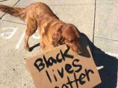 cane partecipa protesta