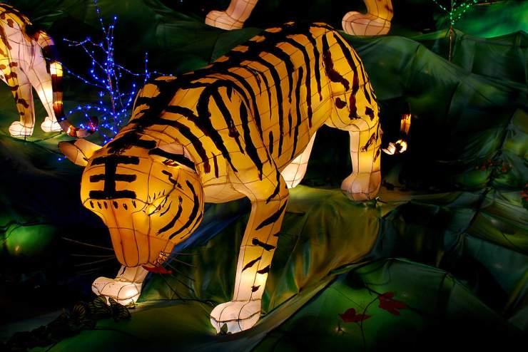 Lanterna cinese tigre