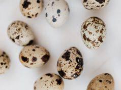 Uova di uccello più comuni quaglia