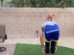 cane esercizi equilibrio padrone