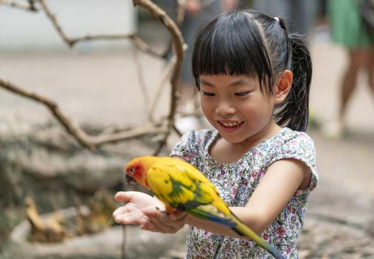 bimba e uccello
