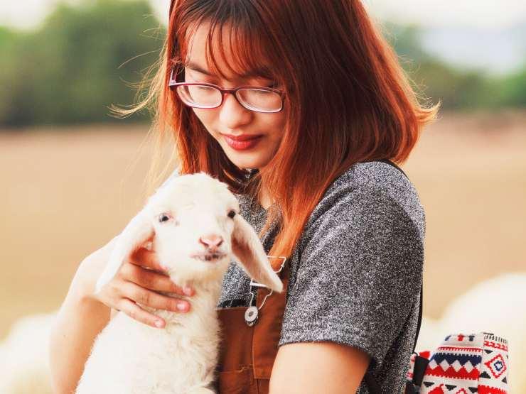 Zoo e santuari per animali