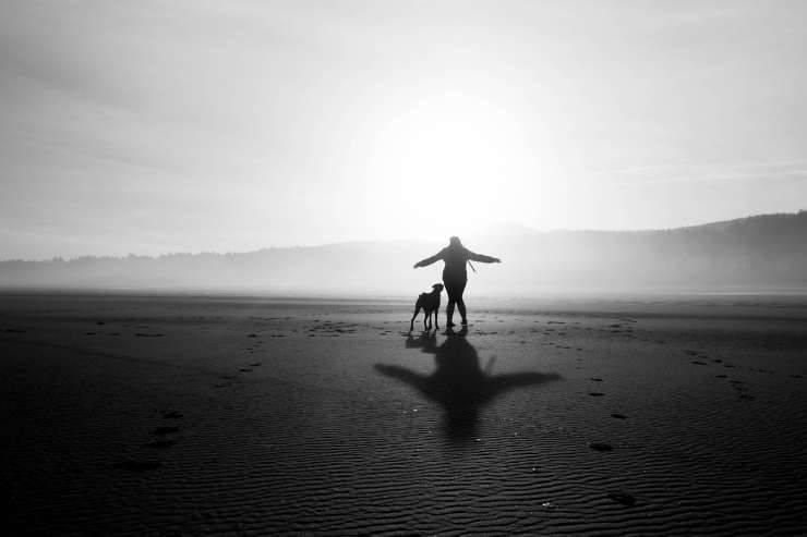 L'amore tra cane e padrone (foto Pixabay)