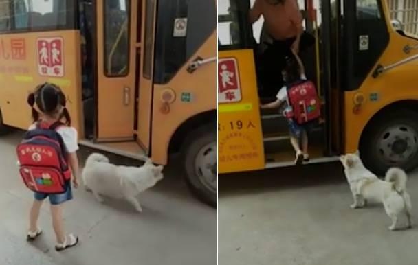 cane bambina scuolabus