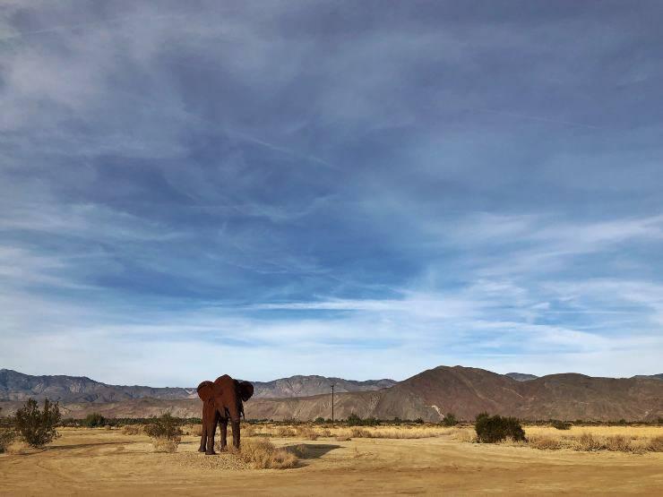 Lotta alla desertificazione