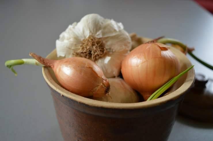 Cipolla e aglio (Foto Pixabay)