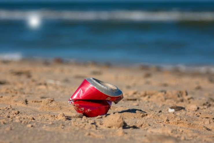 Lattina sulla spiaggia (Foto Pixabay)