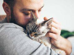 Il gatto si lamenta: cosa significa questo suono nel linguaggio dei mici