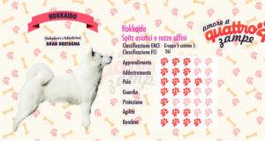 Hokkaido scheda razza