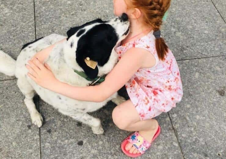 Kupata  il cane che protegge i bambini