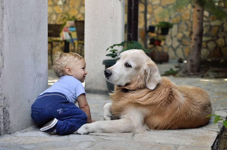 Il cane fa bene ai bambini