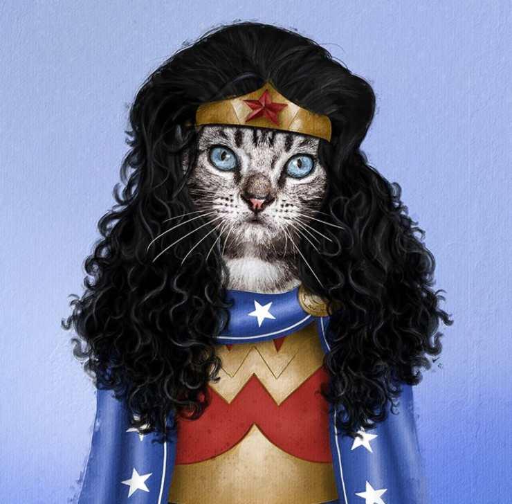modifica foto cani gatti