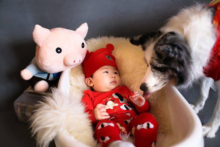 I bambini che vivono con un cucciolo