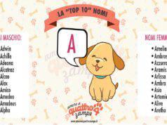 nomi di cane con la lettera A