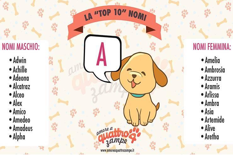 nomi di cani maschi femmina con lettera A