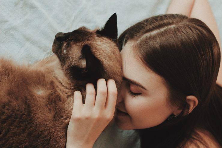 Animali che amano l'uomo