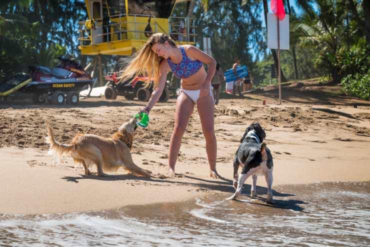 Galateo in spiaggia con il cane
