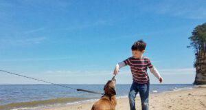 in vacanza con il cane ed i bambini