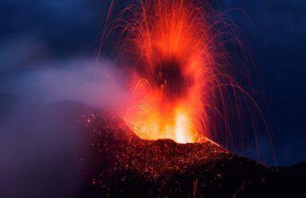 Gli animali prevedono terremoti ed eruzioni vulcaniche