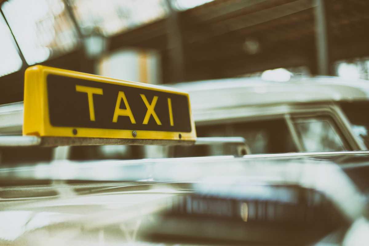 Viaggiare con il cane in taxi