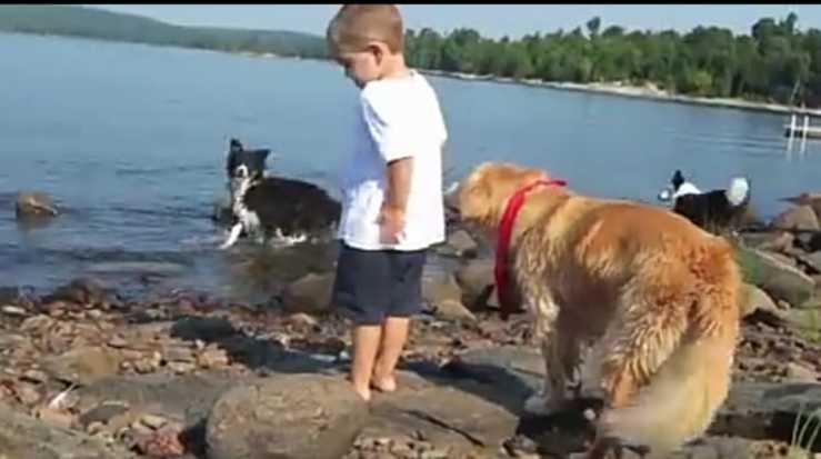 Il cane e il bimbo al lago (Foto video)
