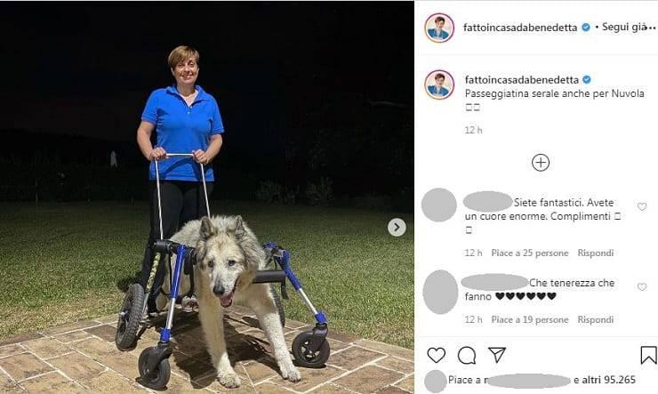 Il post di Benedetta Rossi sul cane Nuvola