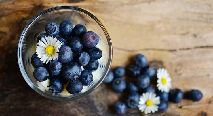 Il mirtillo è un tipico frutto estivo (Foto Pixabay)