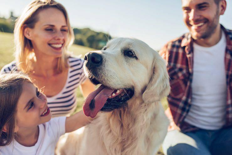 cane in famiglia