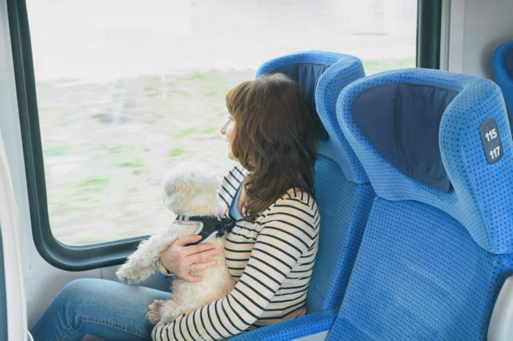 Viaggiare col cane in treno