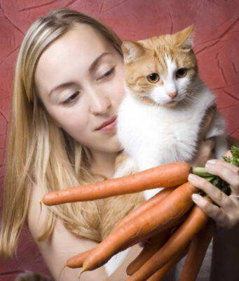 I gatti possono mangiare le carote