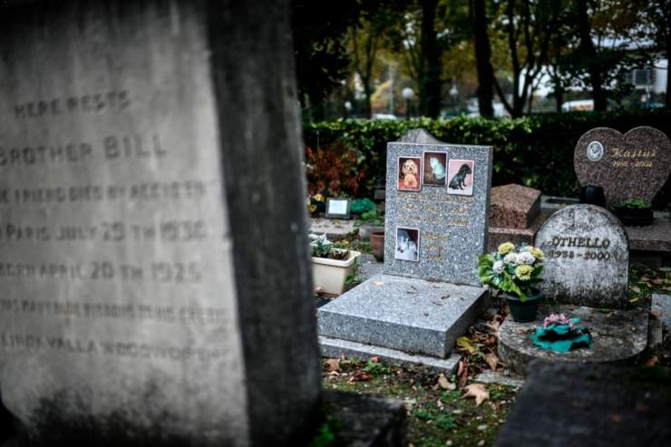 cimitero animali torino