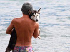 Consigli per proteggere il cane in acqua
