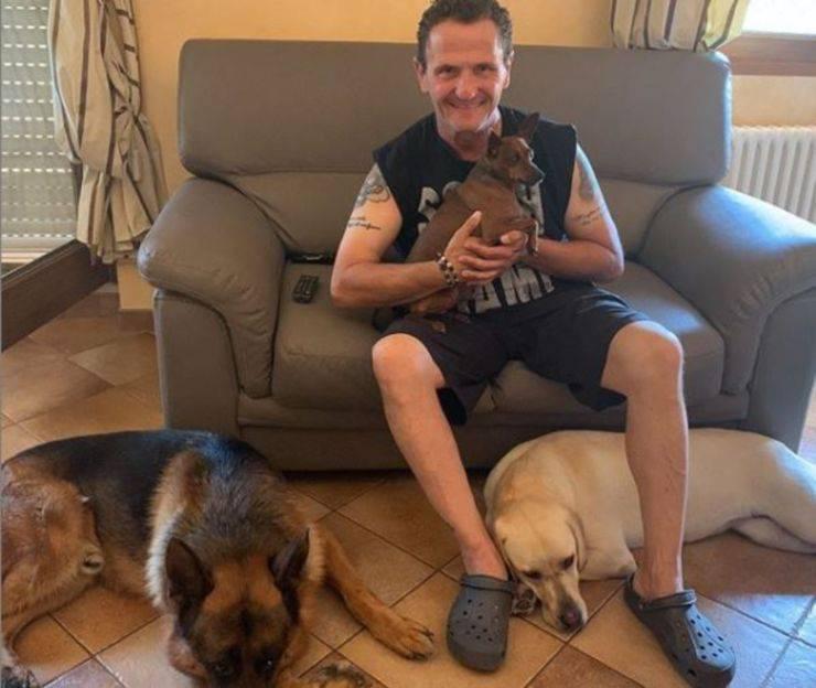 enzo salvi cani