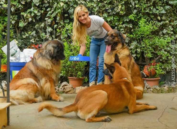Elena e i suoi cani