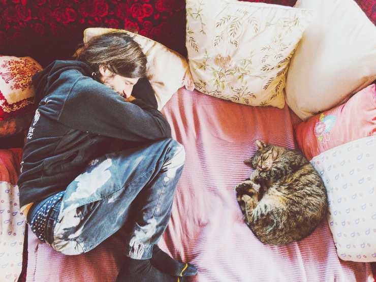 i gatti imitano le abitudini dei loro umani