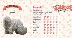 Komondor scheda razza