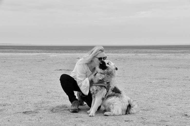 Il cane e la padrona in spiaggia (Foto Pixabay)