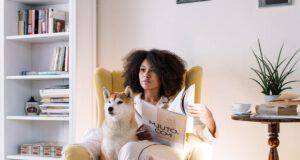 Cani facili da addestrare per la vita in appartamento