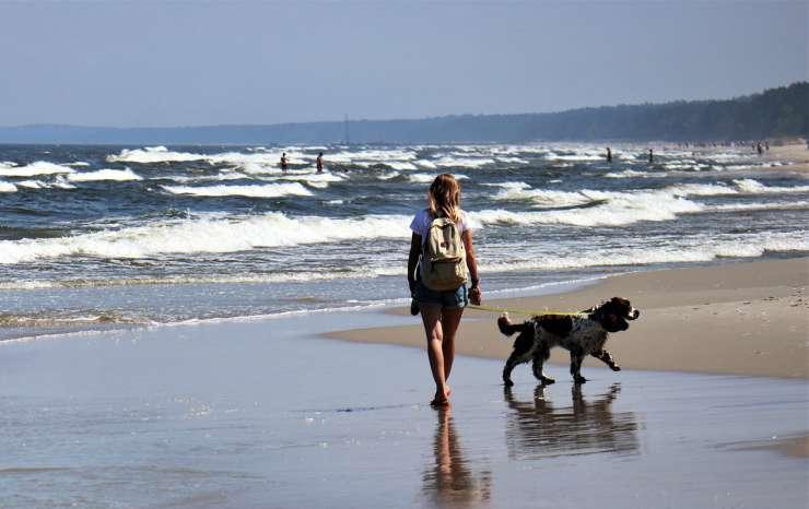 La padrona e il suo cane (Foto Pixabay)