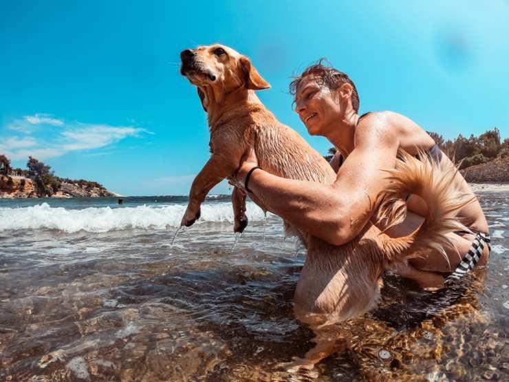 Il cane ha paura del mare