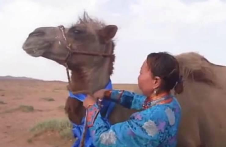Stima e ammirazione (Foto video)