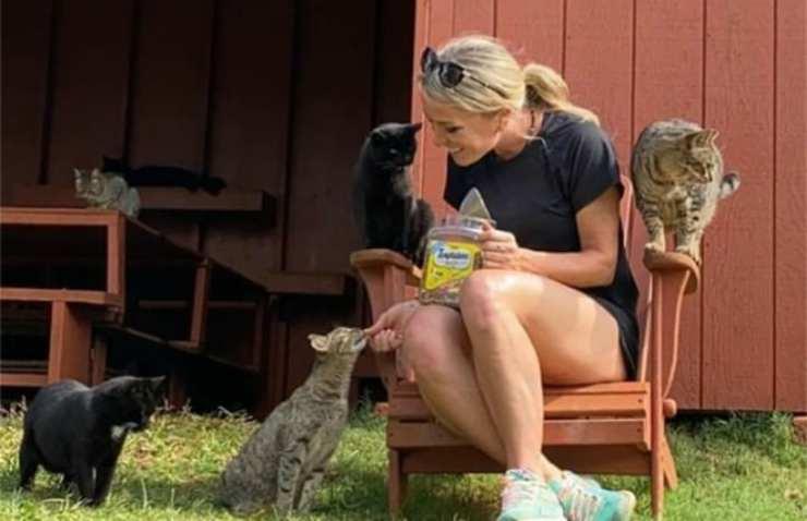 La padrona e i gatti (Foto Instagram)