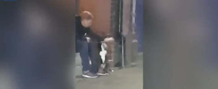 Ragazzo di 29 anni prende a pugni il cane