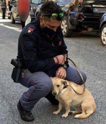roma poliziotto salva cane